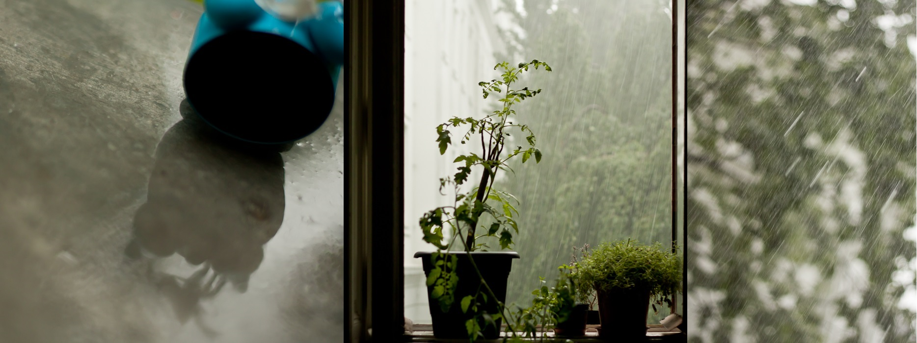 118 Rain in Vienna Collage